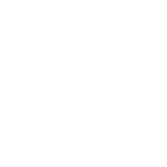 Flamingo Joe's