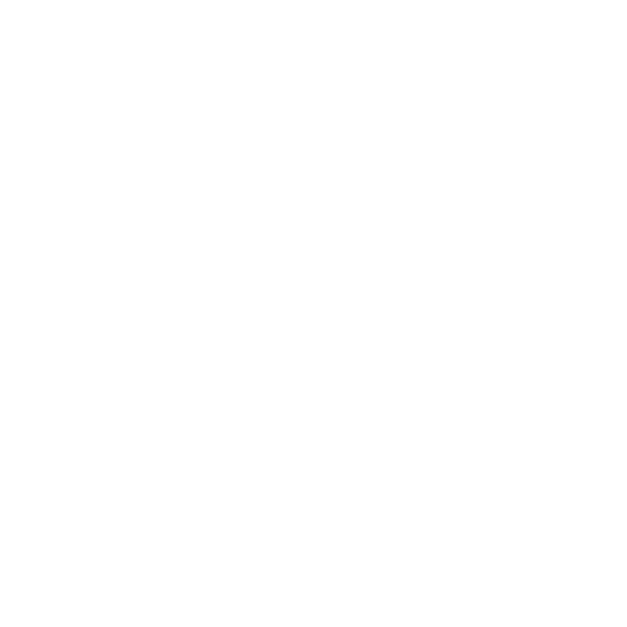 The Borough