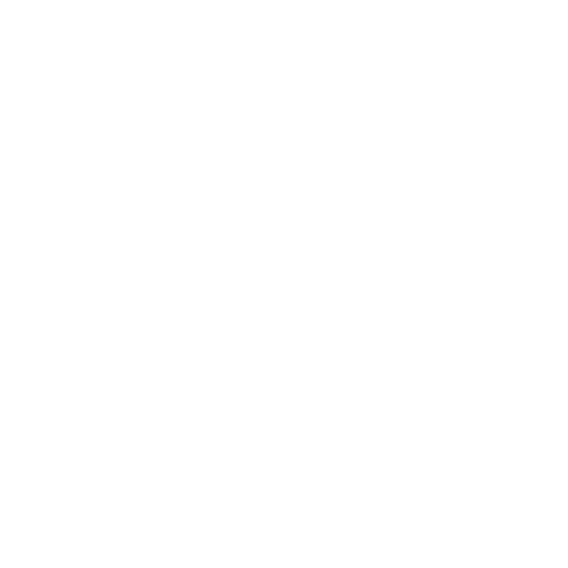 The Sinbin